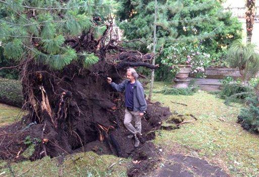 Orto botanico Portici distrutto da tromba d'aria