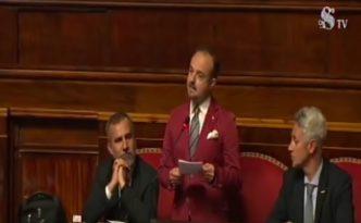 Senato Sergio Puglia M5S Intervento 6 nov 2018